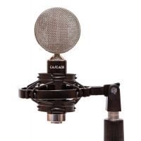 Cascade Microphones Fat Head II Black & Silver in shock mount