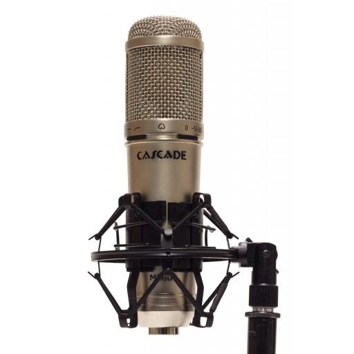 Cascade Microphones Knuckle Head in shock mount