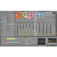 Ableton Live 11 UPG from Live Lite