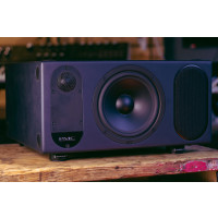 PMC TwoTwo.6 Studio Reference Monitors (Pair) Ex Demo